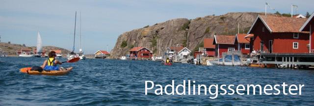 Paddlingssemester i Bohuslän