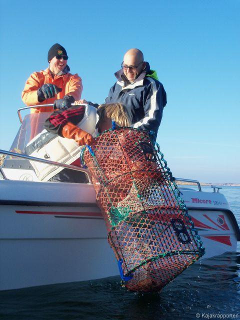 Hummerfiske Fjällbacka skärgård