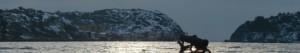 Havstenssund-paddling