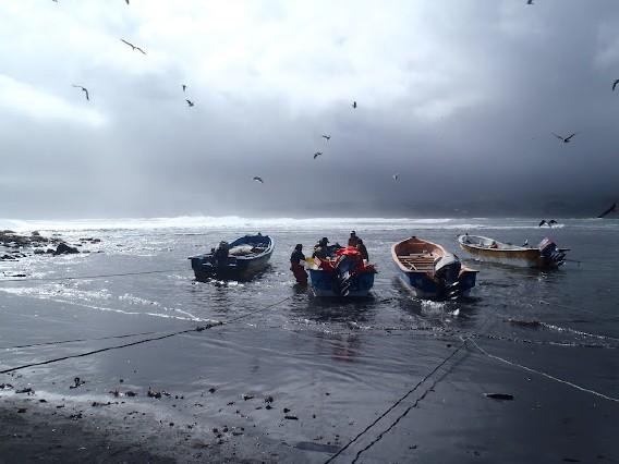 Fiskebåtar vid chilenska kusten. Foto Freya Hoffmeister
