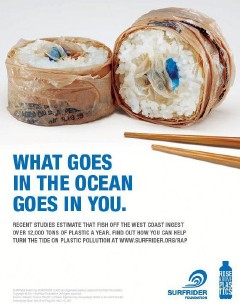 Plastic pollution in the ocean USA