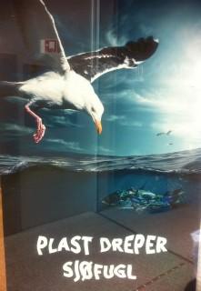 Plastskräp i havet orsakar sjöfågeldöd