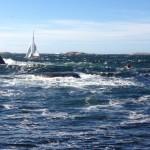 kajak paddlar vågor i Stångehuvud.