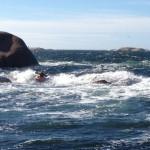 kajak surfar vågor i Stångehuvud.