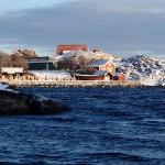 Vinterbild Vikarvet från kajaken