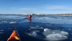 Vinterpaddling Bohuslän isflak
