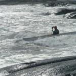 Johan Linder surf hermanö huvud