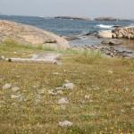 Labyrint Stora Måkholmen Fjällbacka skärgård