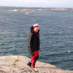 Havsutsikt Västkusten blåsigt hav