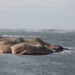 Utsikt över blåsigt hav i Bohuslän