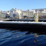 paddling bohuslän vinter Lysekil