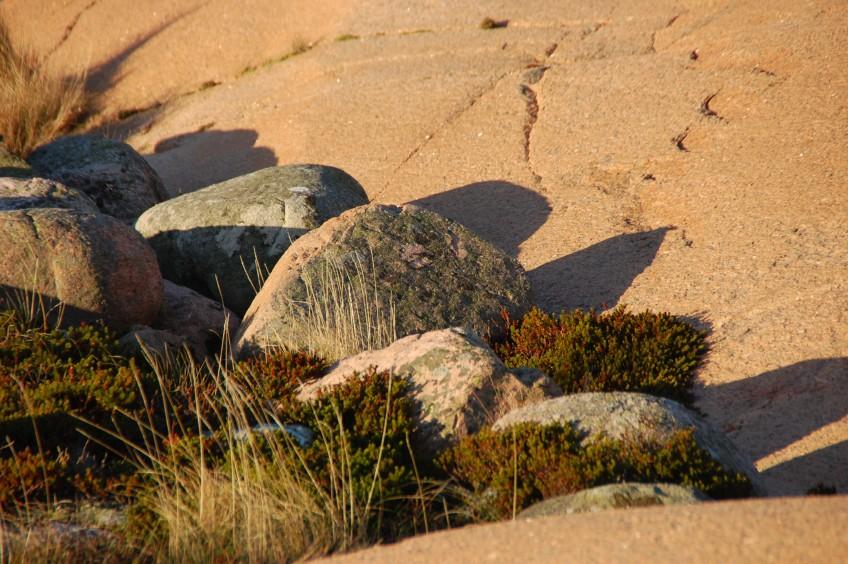 Lysekils skärgård i granit Stångehuvud