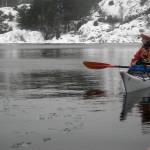 Vinterpaddling med sälar vid Malö